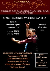 stage-lausanne-23-oct